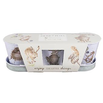 Wrendale Designs Three Herbs Pots and Tray Gardeners Gift