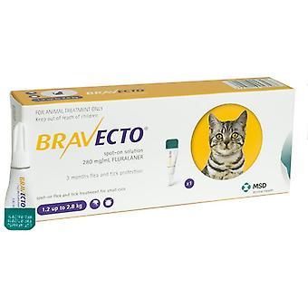Bravecto 112,5 mg Spot-On oplossing voor kleine katten 1.2-2.8kg(3-6lbs)