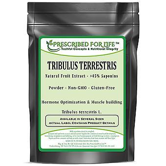 Tribulus Terrestris - Natural Fruit Powder (Tribulus terrestris)
