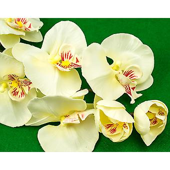 45cm Ivory Artificial Large Orchid Spray