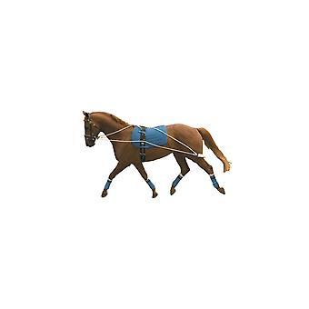 Kincade Lunging Training Aid