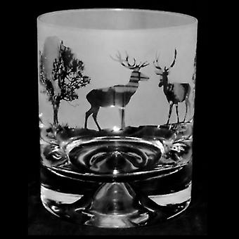 Animo Glass Crystal Whisky Tumbler 30cl - Woodland