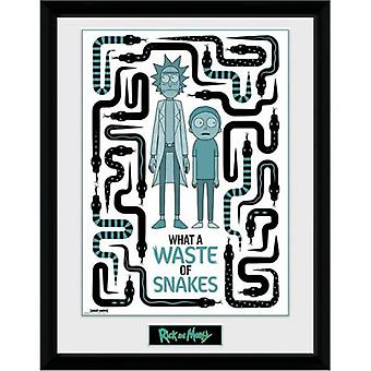 Rick And Morty Picture 16 x 12 Snakes