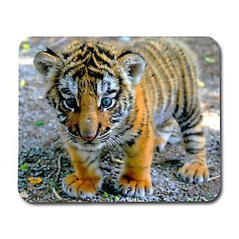 Almofada de rato-filhote de tigre