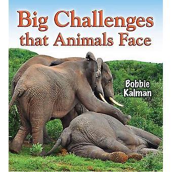 Big Challenges That Animals Face by Kalman - Bobbie - 9780778727897 B
