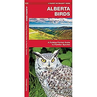 Alberta Birds (Pocket Naturalist)