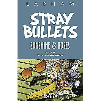 Stray Bullets - Solskinn &; Roser Volume 4 av David Lapham - 978153