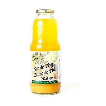 Pineapple Juice 200 ml