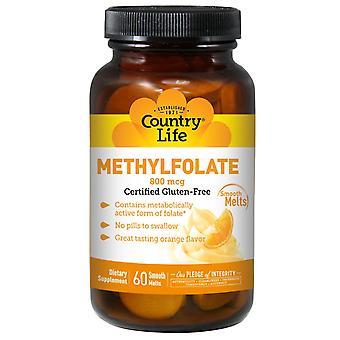 Country Life, Methylfolate, Orange, 800 mcg, 60 Smooth Melts