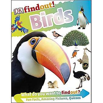 DKfindout! Oiseaux (DKfindout!)