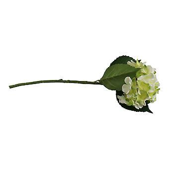 Single Hydrangea Spray, Cream & Green Flower, 49cm