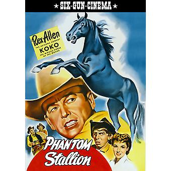 Phantom Stallion [DVD] USA import