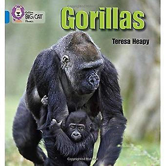 Collins Big Cat Phonics - gorilles: Bleu / bande 4