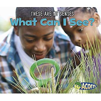 Wat kan ik zien? (Acorn: Dit zijn mijn zintuigen)