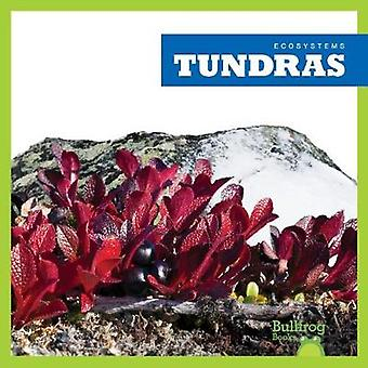 Tundras by Nadia Higgins - 9781620316825 Book