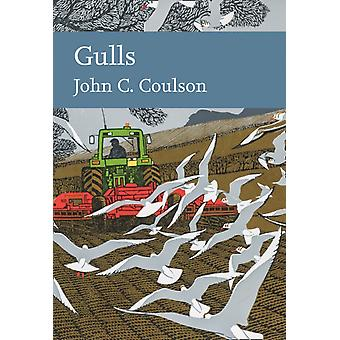 Gulls by Professor John C Coulson