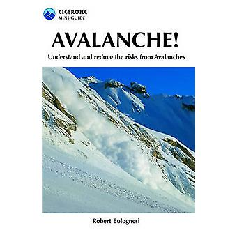 Avalanche! - Understand and Reduce Risks from Avalanches by Robert Bol
