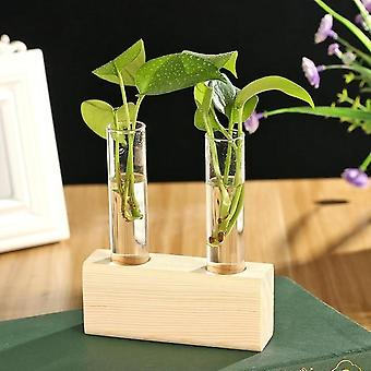 Glass And Wood Vase Planter - Terrarium Hydroponic Plant Flower Pot