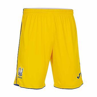 2020-2021 Ukraine Home Shorts (Yellow)