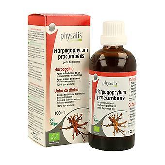 Harpagophyte Extract Bio 100 ml