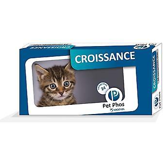 Pet-phos Crecimiento para Gatos 24 Comprimidos (Katten , Supplementen)