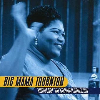 Big Mama Thornton - Hound Dog: Essential Collection [CD] USA import