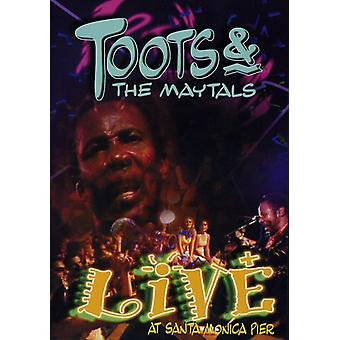 Toots & the Maytals - Live [DVD] USA import