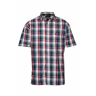 Champion Mens Newmarket Casual Short Sleeve Shirt(Pack of 2)