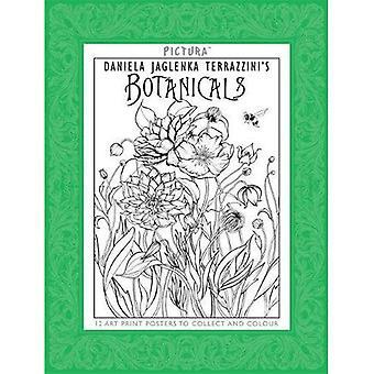 Pictura Drucke: Botanicals