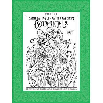Impressions de Pictura: plantes médicinales