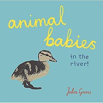 Dierlijke babys in de rivier!