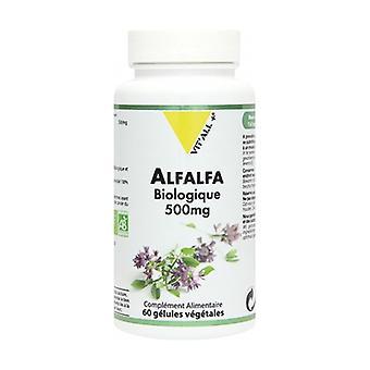 Alfalfa Bio 500mg 60 kasviskapselia