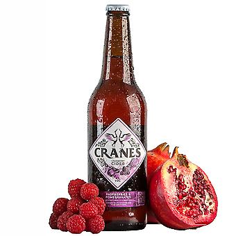 Cranes Cranberry Cider with Raspberries & Pomegranates