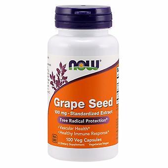 Nyt Elintarvikkeet Rypäleen siemenet, 100 mg, 100 Korkkia