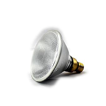 80w Halogen Lampe 220vac Golden Color