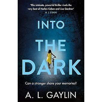 Into The Dark by A L Gaylin