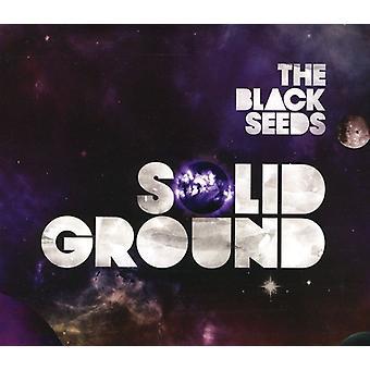 Black Seeds - Solid Ground [CD] USA import
