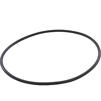 APC APCO2649 O-Ring for Easy Clear CX400G Filter Tank