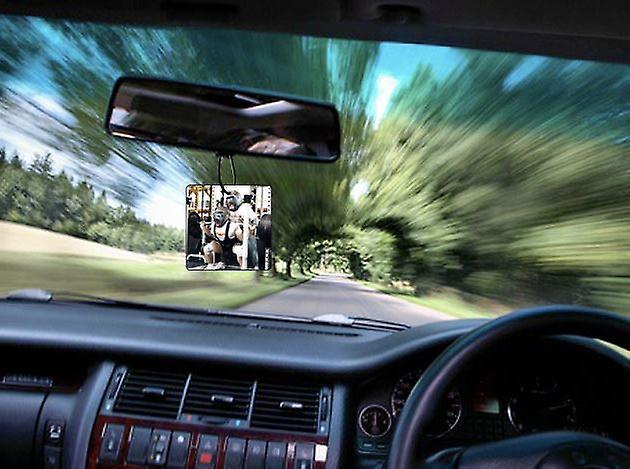 Gorilla Spotter Car Air Freshener