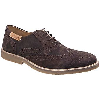 Cotswold Mens Chatsworth Suede Wingtip Shoes Brown