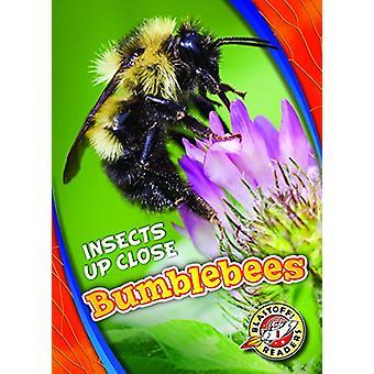 Bumblebees by Patrick Perish - 9781626178014 Book