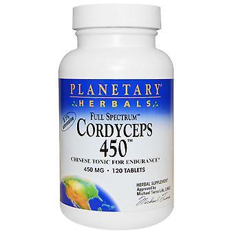 Planetary Herbals, Cordyceps 450, Full Spectrum, 450 mg, 120 Tablets