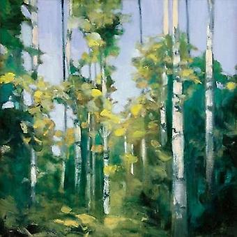 Birches Poster Print by Julia Purinton