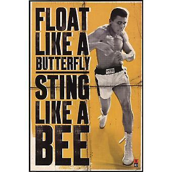 Ali - flutuar como uma borboleta Poster Poster Print
