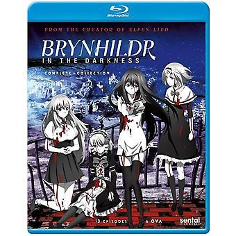 Brynhildr in the Darkness [Blu-ray] USA import