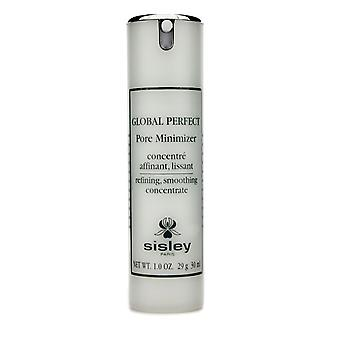 Global perfect pore minimizer 146813 30ml/1oz