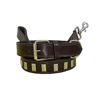 Bradley crompton genuine leather matching pair dog collar and lead set bcdc10purple