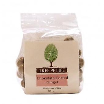شجرة الحياة-الزنجبيل-الشوكولاته المغلفة
