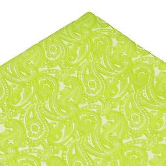 Ties Planeta Verde Brillante Paisley Patrón Bolsillo Cuadrado Pañuelo