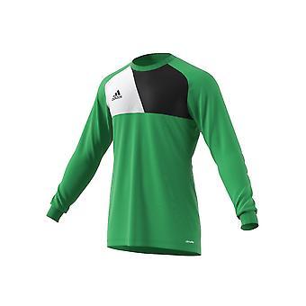 Adidas Assita 17 AZ5400JR football all year boy sweatshirts